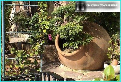 Perceel in mediterrane stijl: de tuinen van Zuid-Europa in de Russische realiteit