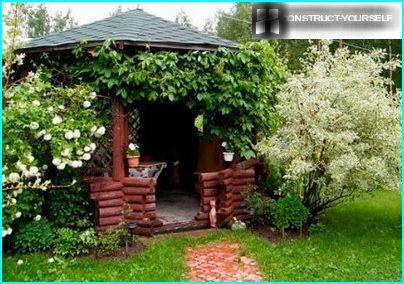Udsmyk lysthuset med planter