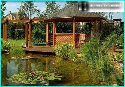 Hyggeligt lysthus ved dammen