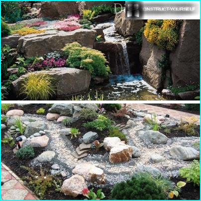 Trame per un giardino fiorito in pietra