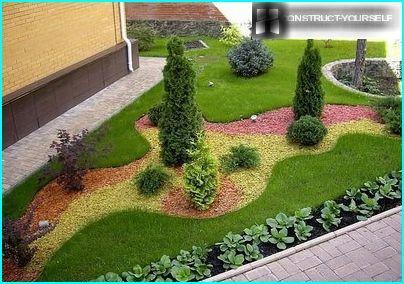 Hackschnitzel für Pflanzenzusammensetzungen