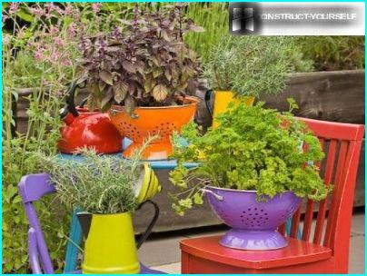Flower bed out of old dishes