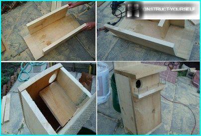 Bygning af et egern fra et kantet bræt