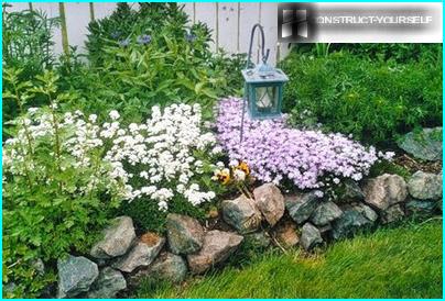 Kukkasängyt kuivuuskestävistä kasveista