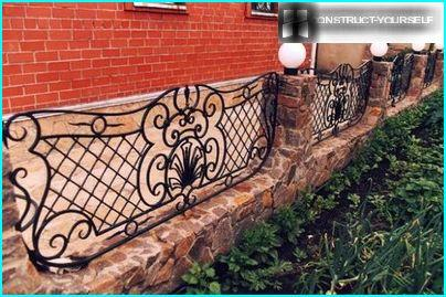 Decorative fences with elements of artistic forging