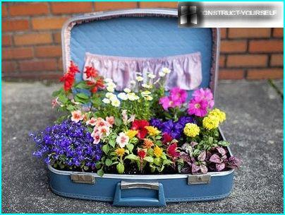 Suitcase for the flower garden
