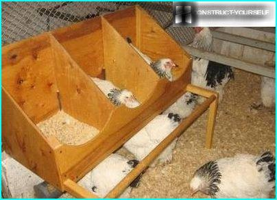 Space for hens