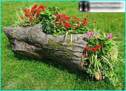 The flower garden of the old logs