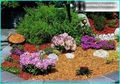 Un lit de fleurs soigné décoré de poussière de bois