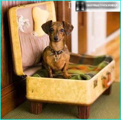 Valigia per cani