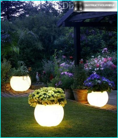 Glowing pots for plants