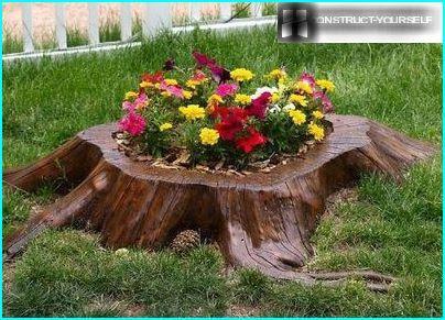 Flower garden from a low stump