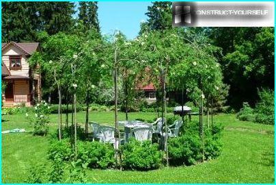 Live tuinhuisje