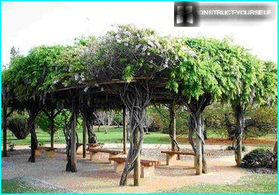 Garden furniture made of tree trunks
