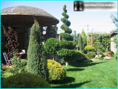 Topiary i landet
