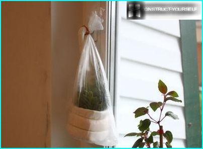 Oppbevaring av stiklinger