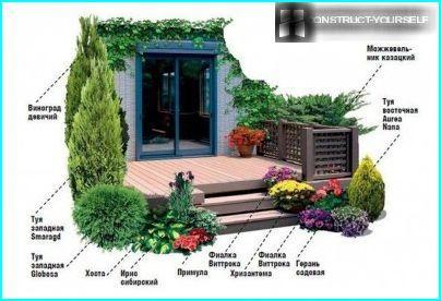 Juniper kosakke i utformingen av verandaen til huset
