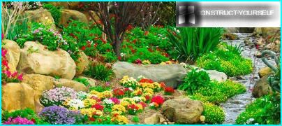 Kuinka sisustaa puutarhasi espanjalaiseen tyyliin, jotta se ei olisi huonompi kuin Madridissa