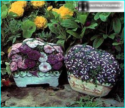 Kukka kivet