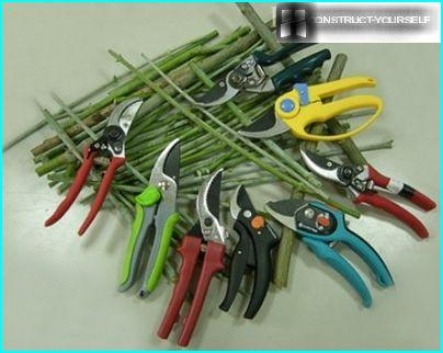 Types of pruning shears