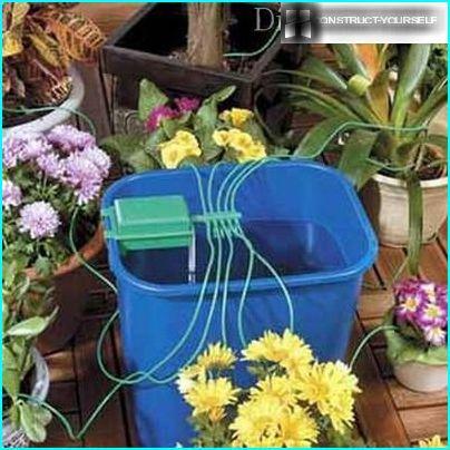 Arroser les plantes avec une mèche