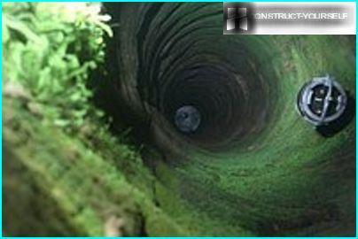 Зелен кладенец