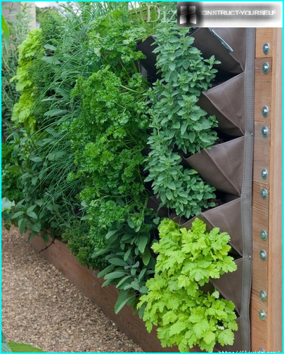 Hanging containers of greens