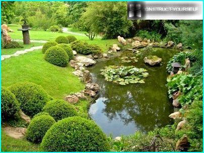 Stagno del paesaggio nel giardino
