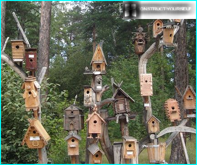 Husets placering i forhold til kardinalpunkterne