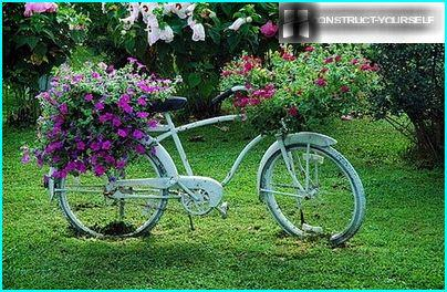Old Bicycle, decorated with fresh caps of petunias