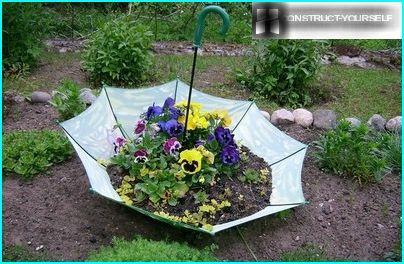 Elegantes Blumenbeet von einem alten Regenschirm