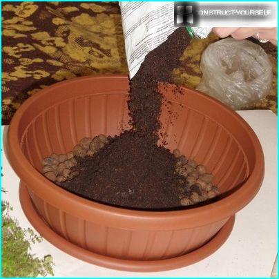 Filling the capacity of the fertile soil