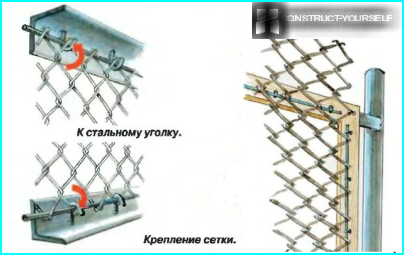 Det viser seksjonen fra hjørnet med netting