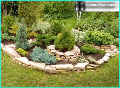 Hvordan velge en hagesprøyte: hvilke modeller er tilgjengelige og hvilke er bedre å kjøpe?