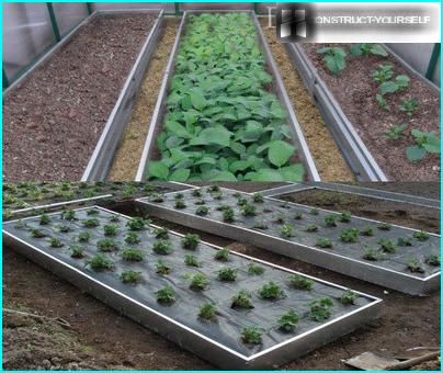 Wir wählen eine Motorpumpe zur Bewässerung des Gartens: Gerätetypen + Auswahltipps