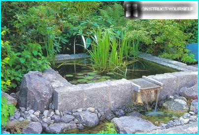 Ursprünglicher erhöhter Teich