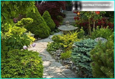 Puutarha-kävelytie portaiden kanssa