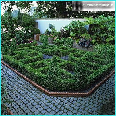 Tavallinen puutarha