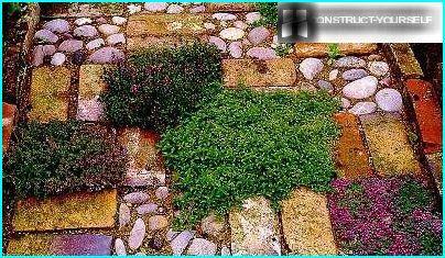 Path of stone