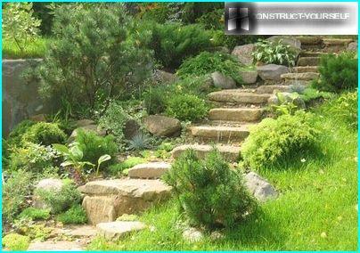 Спуск з кам'яних сходинок