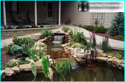 Alt om rutarium eller hvordan man laver en have fra gamle stubbe og rødder med egne hænder