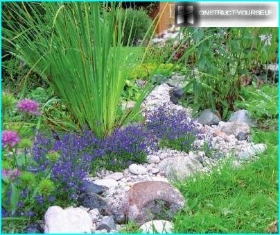 Dekoration eines Steinstroms mit Blumen