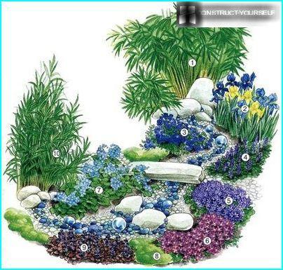 Схема висадки рослин