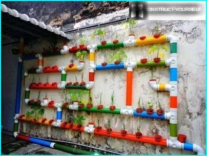 Parterre de fleurs dans les tuyaux